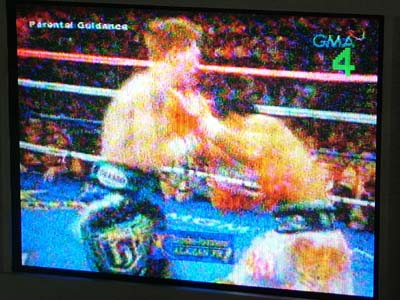 manny vs hatton7.JPG
